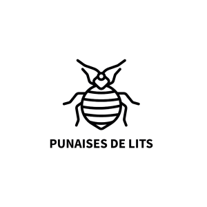 Punaises de lits, especes-risque-sante.info, Observatoire des espèces à enjeux pour la santé humaine, Espèces risque santé, Espèces à Enjeux pour la Santé Humaine, Espèces à enjeux, Espèces ayant un impact sur la santé humaine, ambroisie-risque.info, Observatoire des ambroisies, Centre de ressources sur les ambroisies, Centre de référence national ambroisie, Ambroisie risque, Ambroisie, Journée de luttes contre les ambroisies, Ambroisie à feuilles d'armoise, Ambroisie trifide, Ambroisie à épis lisse, Ambrosia artemisiifolia, Ambrosia trifida, Allergie ambroisie, Ambroisie en France, Lutter contre l'Ambroisie, Ambroisie chez les particuliers, Ambroisie en milieu urbain, Ambroisie en milieu agricole, Ambroisie en bord de routes, Ambroisie sur les chantiers, Ambroisie dans les carrières, Ambroisie en cours d'eau, Captain Allergo, Lettres de l'Observatoire des Ambroisies, Vidéo Ambroisie, Photo Ambroisie, Documentation Ambroisie, Boîte à outils du coordinateur ambroisie, Coordinateur ambroisie, Boîte à outils du référent ambroisie, Référent ambroisie, Rôle du maire et du référent ambroisie, Réglementation ambroisie, Signaler ambroisie, Signalement ambroisie, Risque santé ambroisie, Lettre de l'Observatoire des ambroisies, plantes-risque.info, Plantes risque, Centre de ressources sur les espèces à enjeux pour la santé humaine, Plantes à risque, Végétaux à risque pour la santé, Plante en vente présentant un risque fort pour la santé humaine, Plante en vente à risque, Plante risque ingestion, plante risque allergie respiratoires, Plante risque en cas de contact, Bienfaits des végétaux, Symptôme plante, Symptôme plante à risque, Réglementation plantes à risque, chenille-risque.info, Observatoire des chenilles processionnaires, Centre de ressources sur les chenilles, Centre de ressources sur les chenilles processionnaires, Centre de référence national chenilles processionnaires, Chenille risque, Chenilles processionnaires, Journée de luttes contre les chenilles processionnai